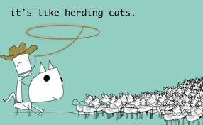 control of external sources - herding cats